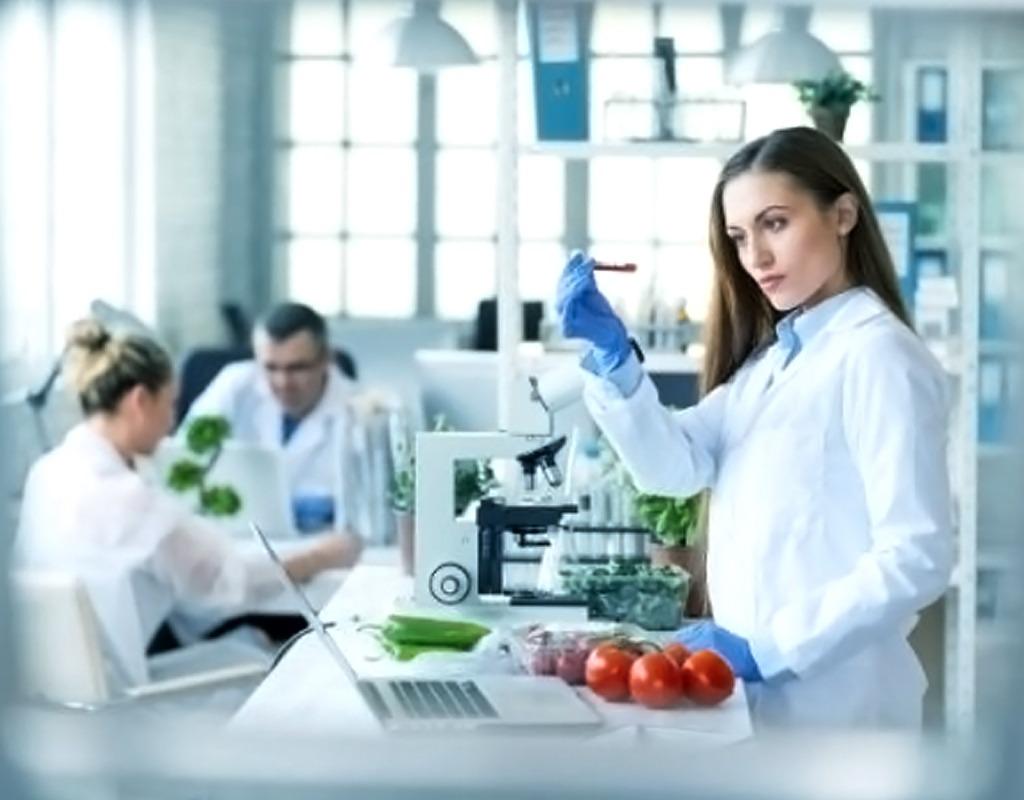 BBH Agencies - Product Development